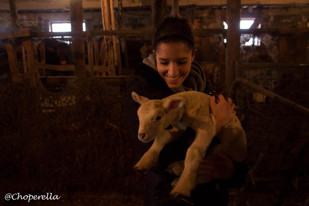Farm Visit-20