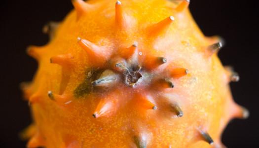 Fruit Hunter #1:  Horned Melon