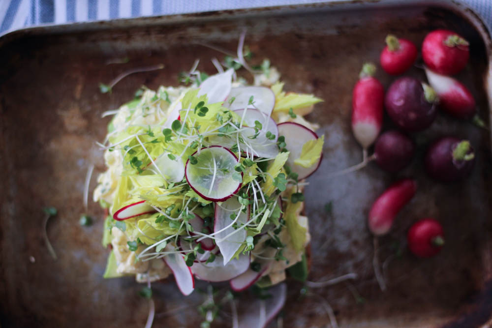 Egg Salad Sandwich-7
